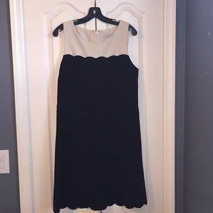 Loft Dress 12
